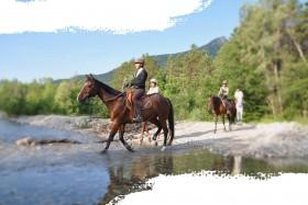 Un Tour à cheval dans les Alpes Provençales (4 jours)