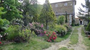 Parcs et jardins dans les Alpes de Haute-Provence : Abbaye de Valsaintes