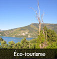 Qualité environnementale et tourisme : éco-tourisme