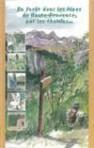 (12) En forêt dans les Alpes de Haute-Provence – Guide de découvertes par les chemins…