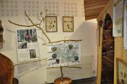 Sites et hébergements labellisés : Maison du bois