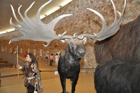 Musée de la Préhistoire des Gorges du Verdon
