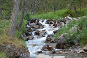 Pêche en rivières