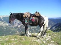 Les tours du Verdon à cheval