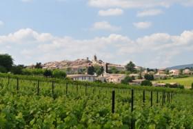 Vins AOC Pierrevert