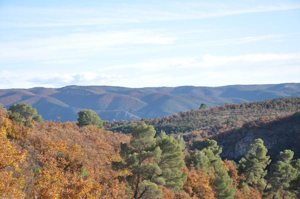 Grandes randonnées : Montagne de Lure