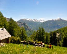 randonnée en montagne Chasse Val d'Allos