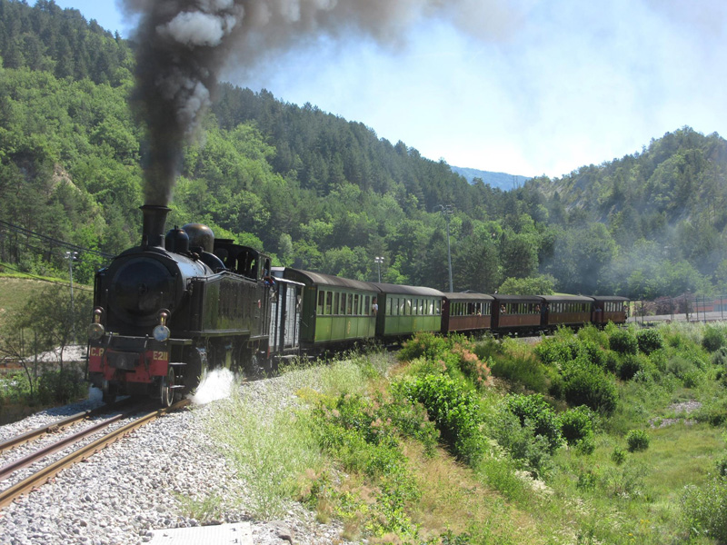 Train des Pignes à vapeur