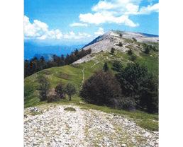 carte Pays de Forcalquier et la montagne de Lure - 30 promenades et randonnées