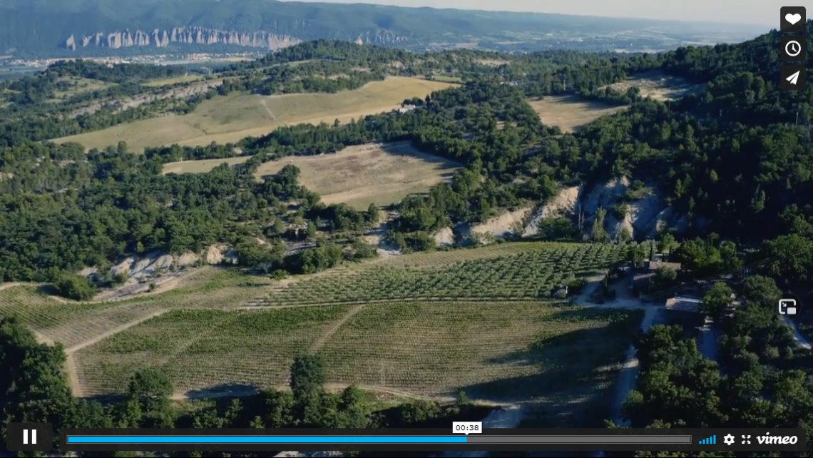 Oenotourisme : Domaine des Bergeries de Haute-Provence