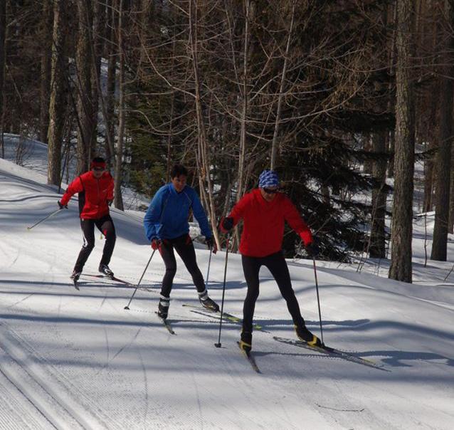ski nordique sous les mélèzes