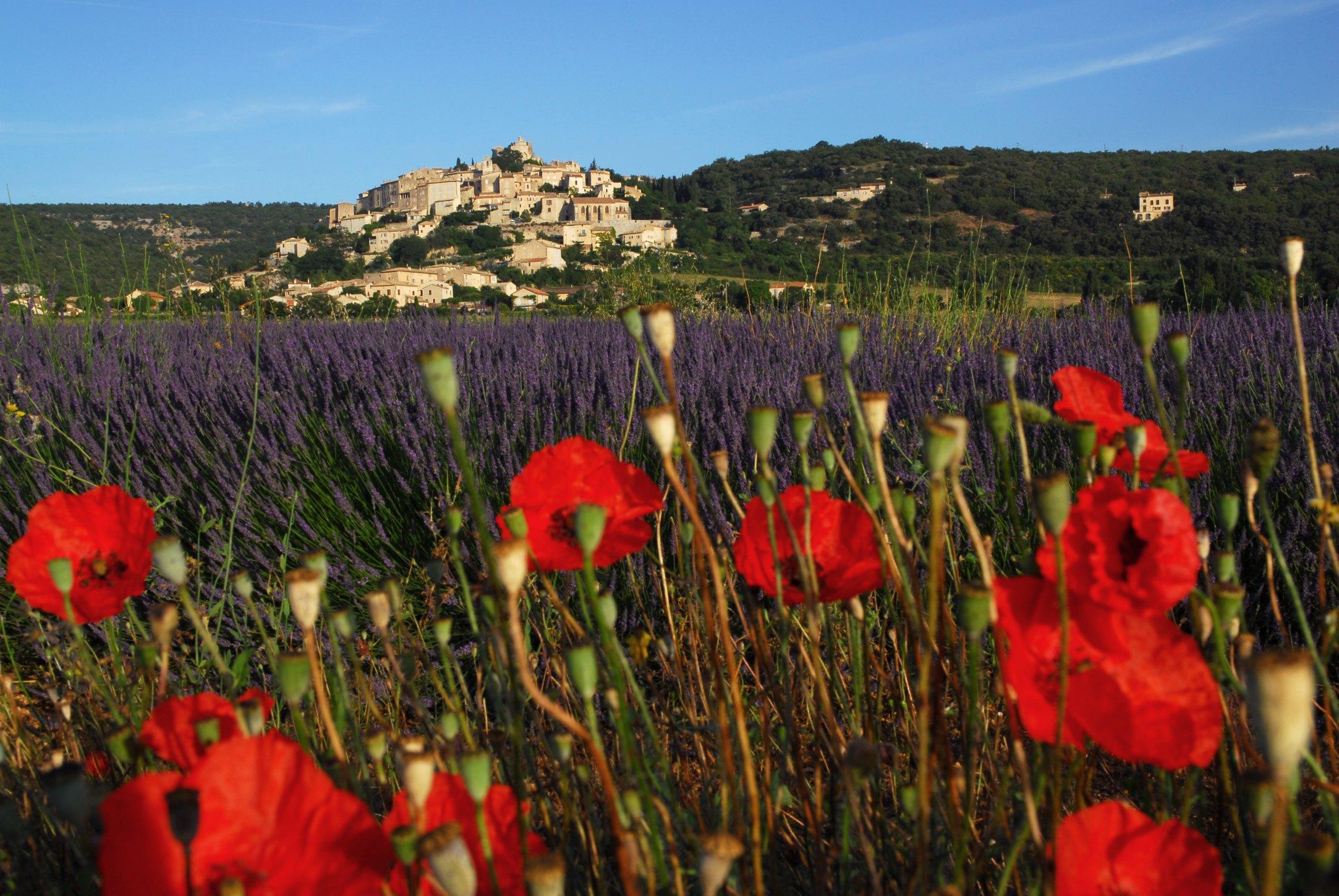 Simiane la rotonde romantique alpes de haute provence tourisme - Office du tourisme forcalquier ...