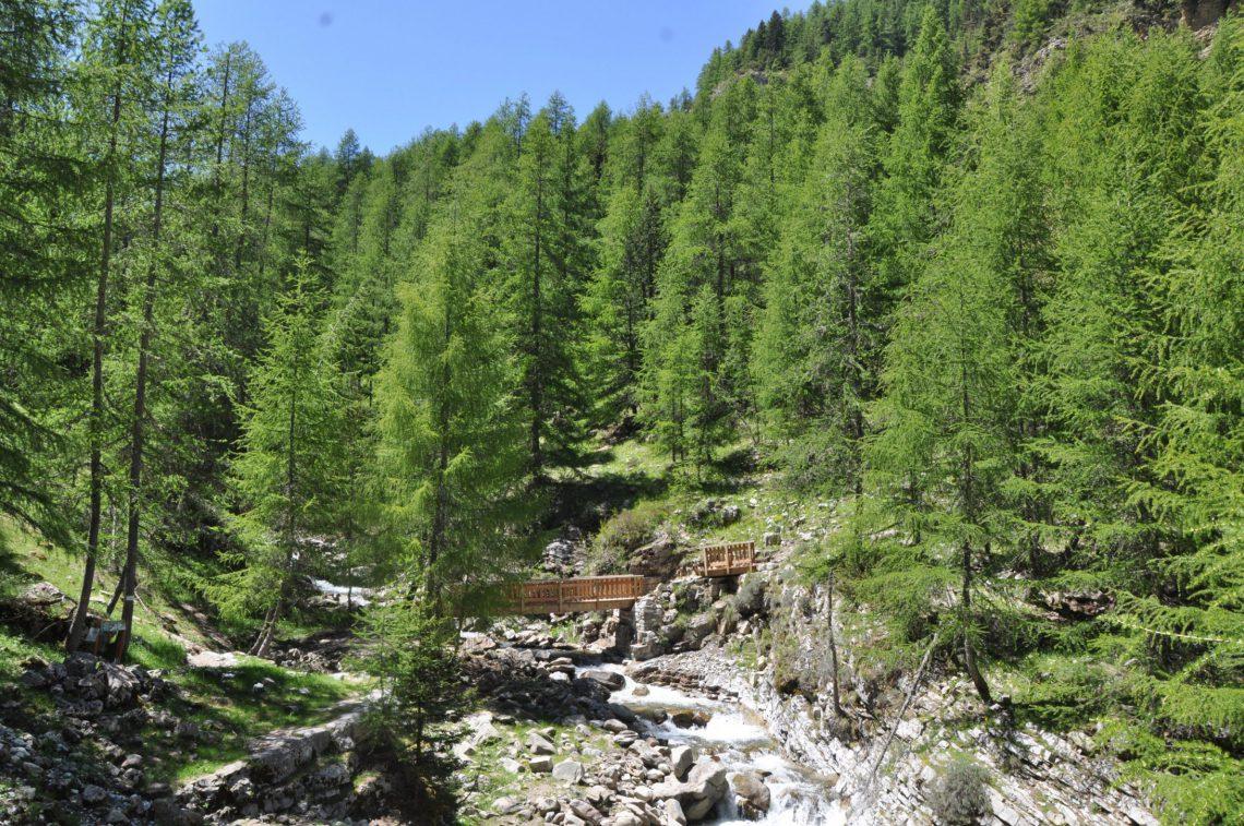 Espace Trail du Haut-Verdon vallée de Chasse