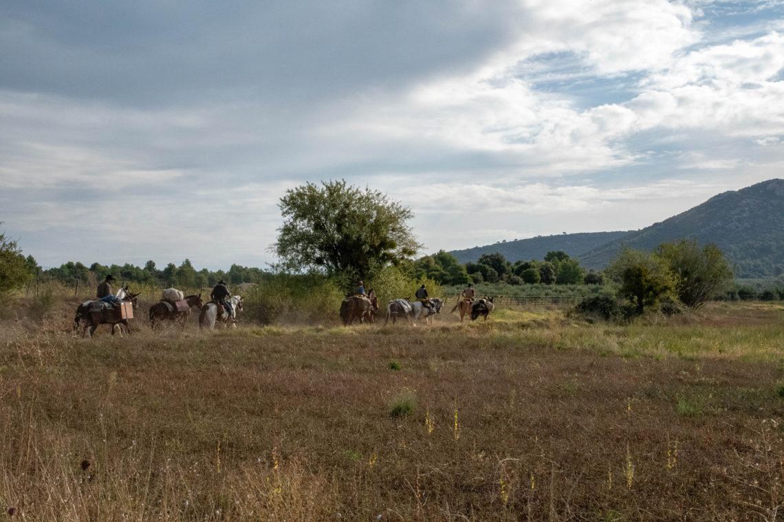 Cavaliers sur La Routo ©AD04/ Alain Le Breton