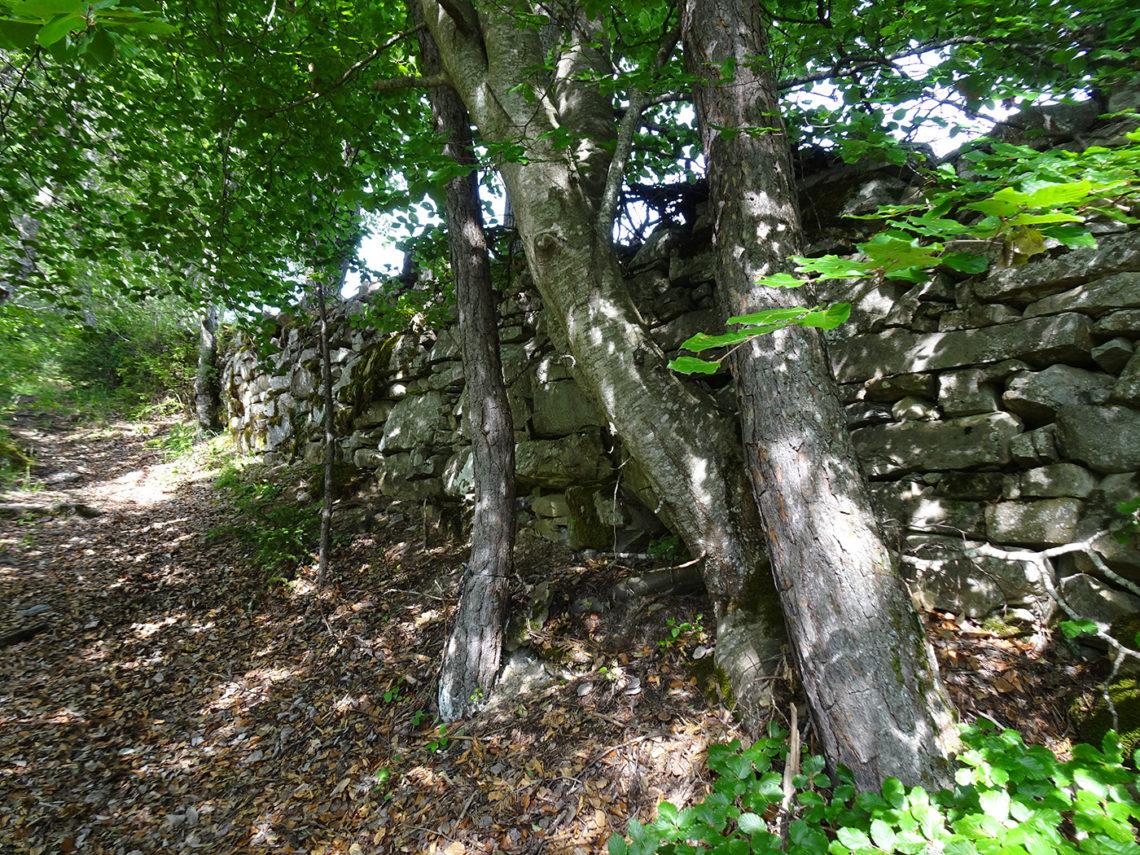 Ancien mur de pierres sur le Chemin Jean Proal