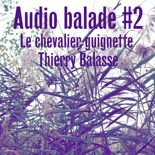 Audio balade #2 aux Mées