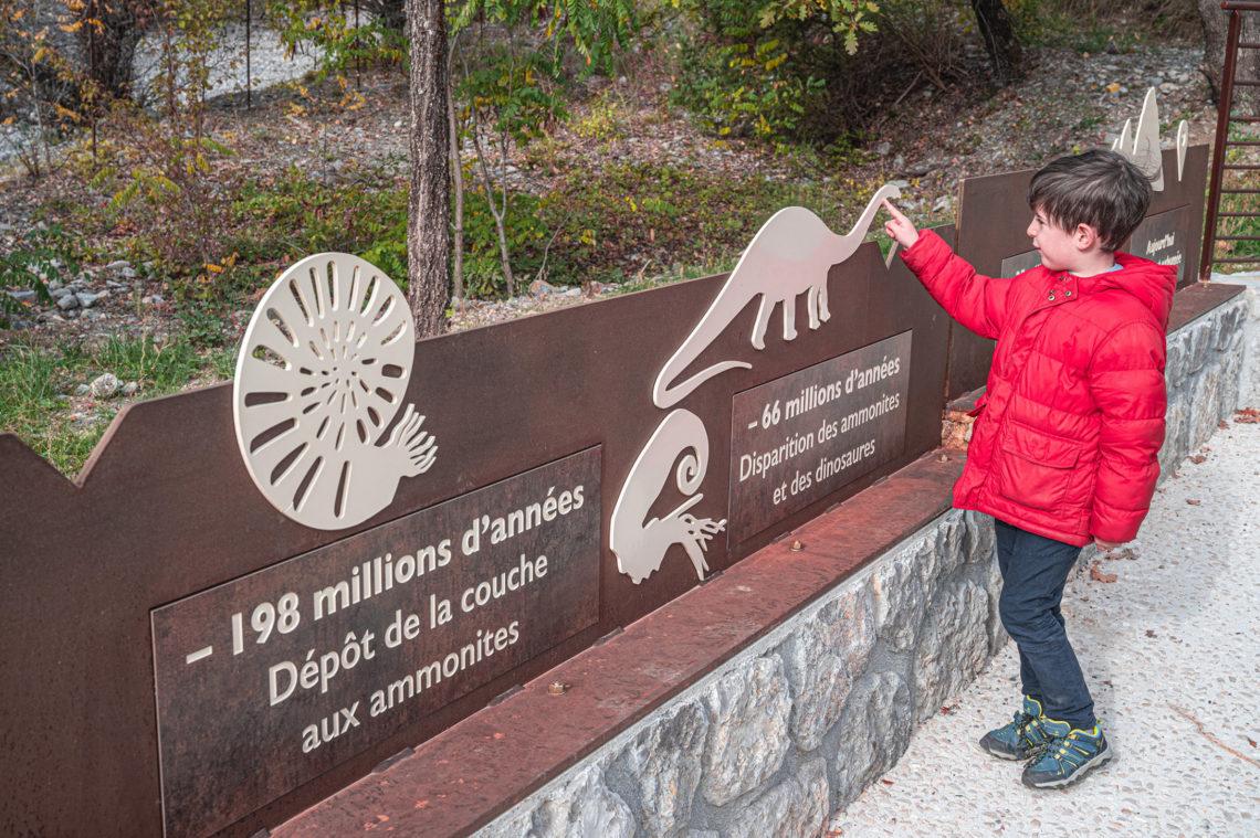 Dalle aux ammonites Digne-les-Bains ©AD04-Globeblogueurs
